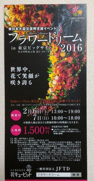 FlowerDream.jpg